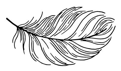 piórko